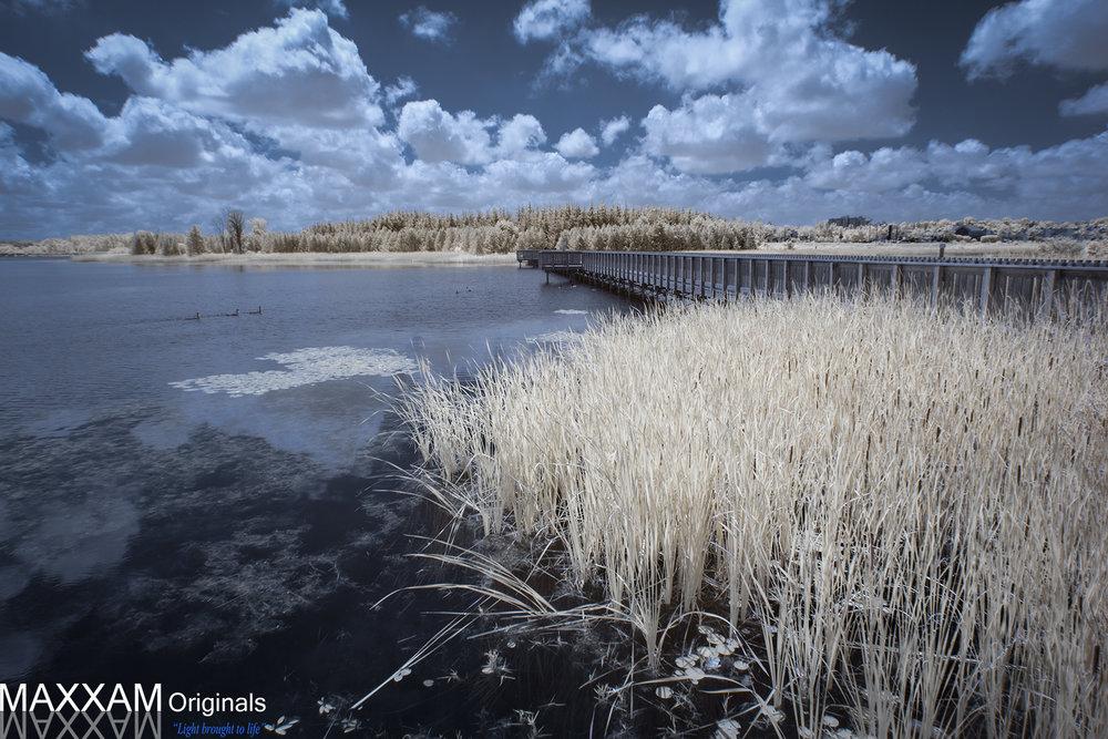 ILake-Bridge-Infrared.jpg