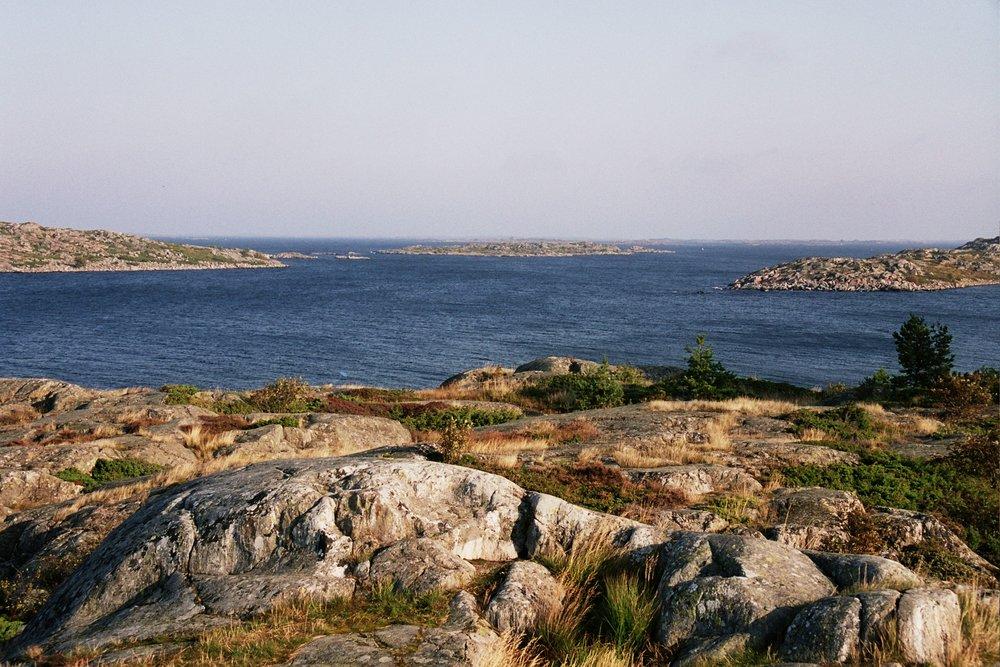 Kuva: Janne Gröning/ Archipelagophoto