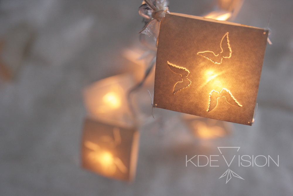 Kdevision Wing f.lights3.jpg