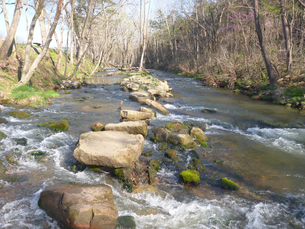 Dry Run Creek provides ideal trout habitat.