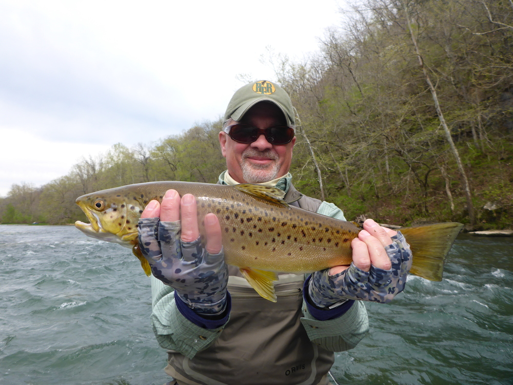 Client Lou with a brown trout from the Norfork River.