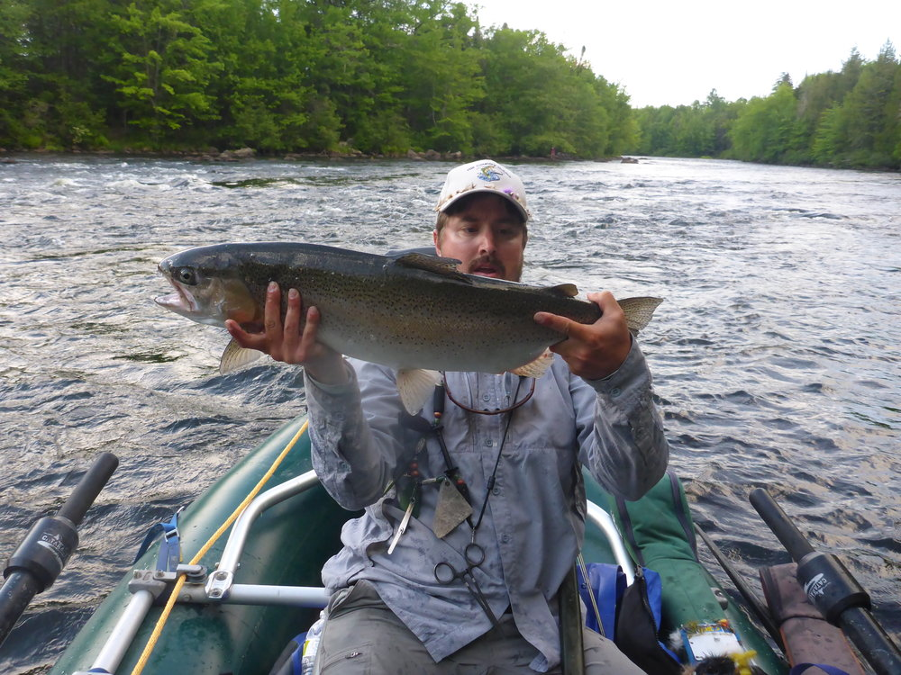 "Owner and head guide Nate Hill with a 28"" NH rainbow trout caught by client Charlie Houghton."