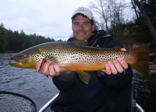 Tom with a Saco River Brown Trout