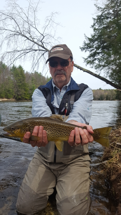 Bill Thompson with an early season Saco brown.