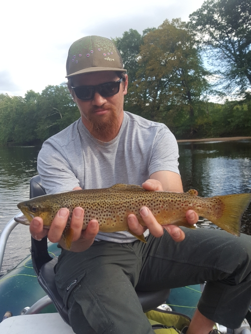 Brian Boyle with a decent Saco brown.