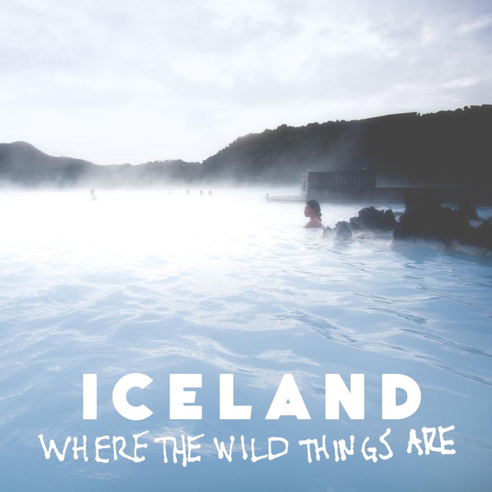 IcelandReykjavikBlueLagoonGeothermalPools-20100210-copy.jpg