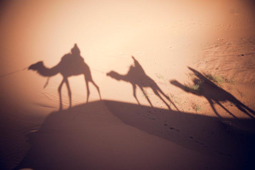 MoroccoMerzougaHassilabiedErgChebbiSaharaErgDesertDunes-20140415-P.jpg