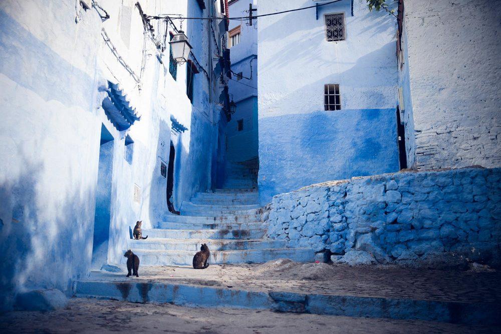 MoroccoChefchaouenBlueCity-20140415-15.jpg