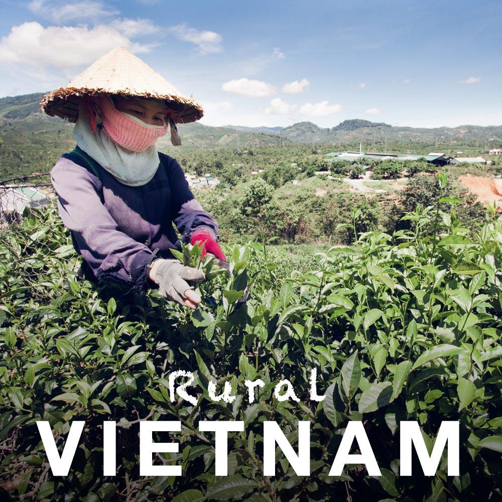 Vietnam89.jpg