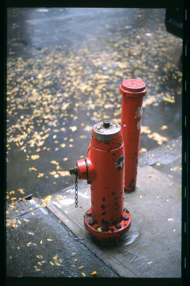Provia Fire Hydrant