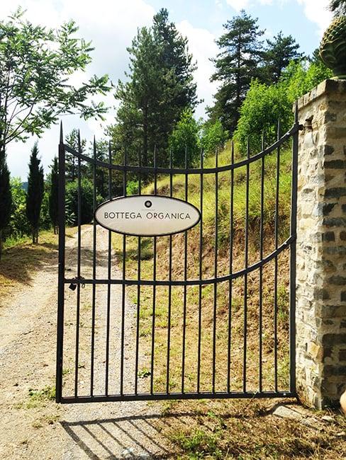 La tenuta di Bottega Organica in Liguria