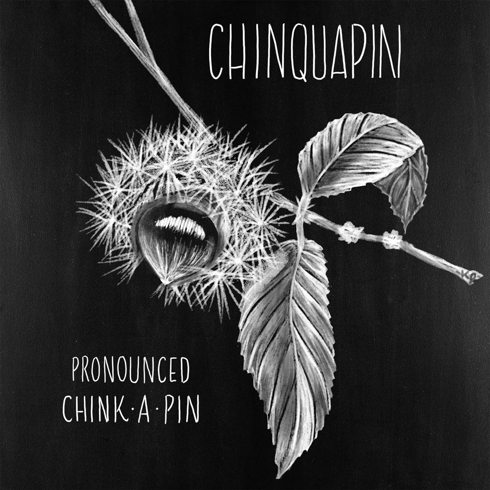 chinquapin.jpg