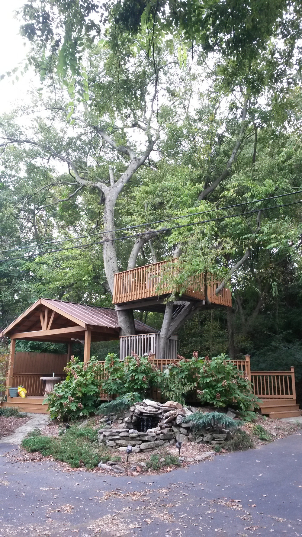 Creative Caffeine's Tree house!