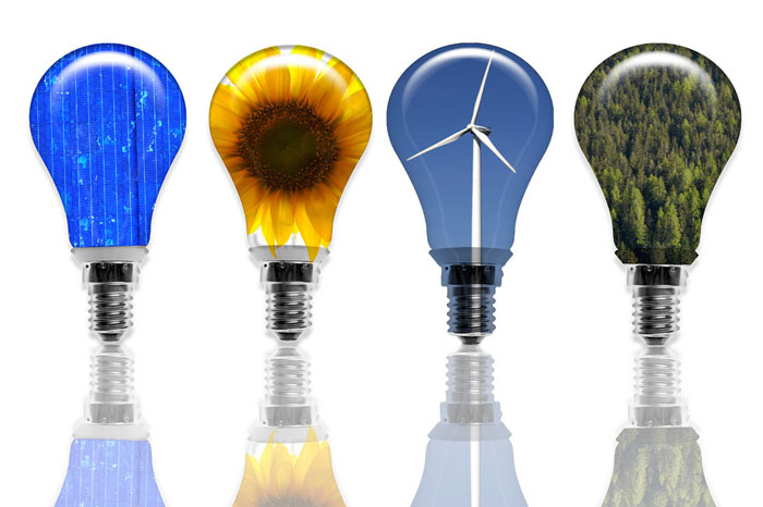 Green energy light bulbs