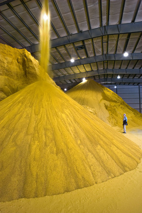 Corn ethanol biofuel