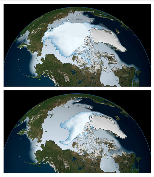 Decrease in Arctic Sea Ice