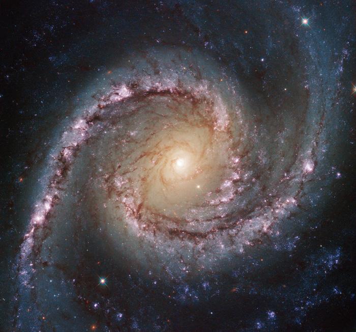 Galaxy NGC 1566