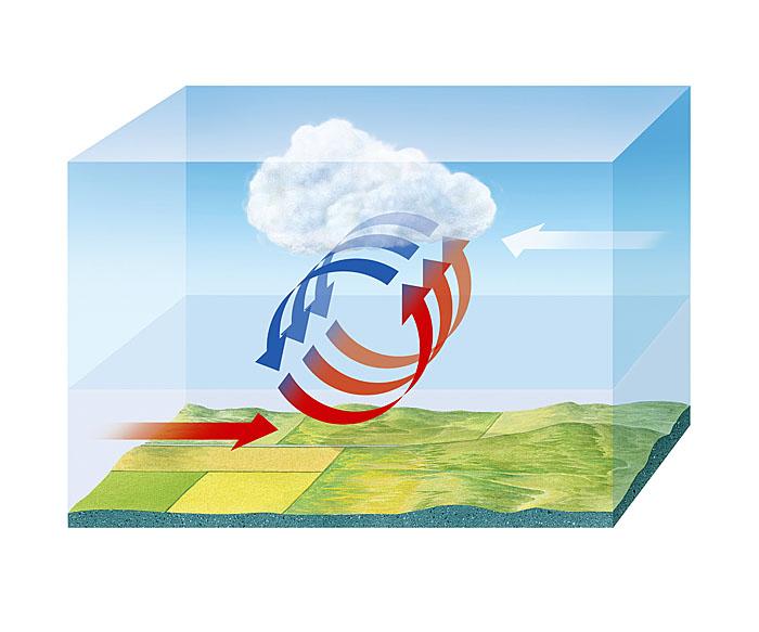 Tornado dynamics