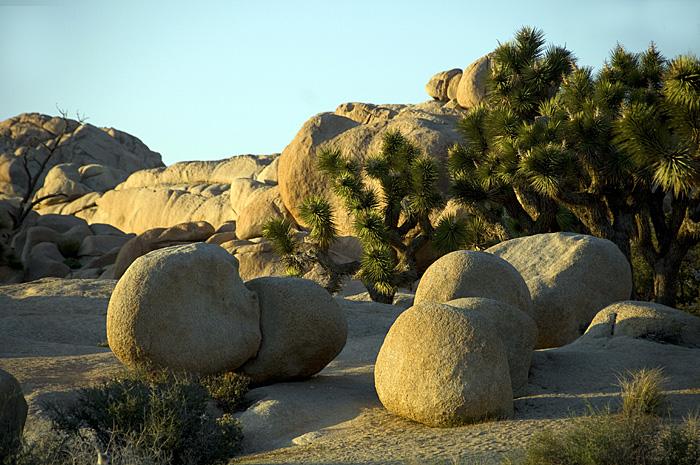 Monzonite granite