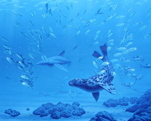 Pliocene Sea