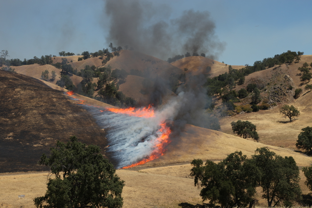 Head fire at Fort Hunter Liggett.