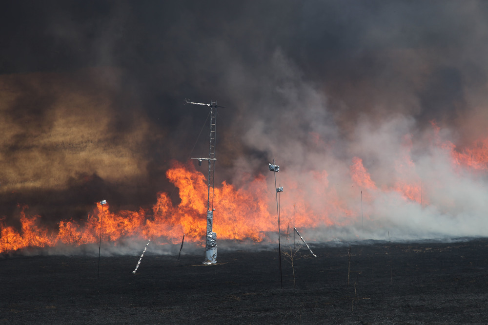 Fire front moving through instrumentation array during wildfire field experiment, 22, june 2012.