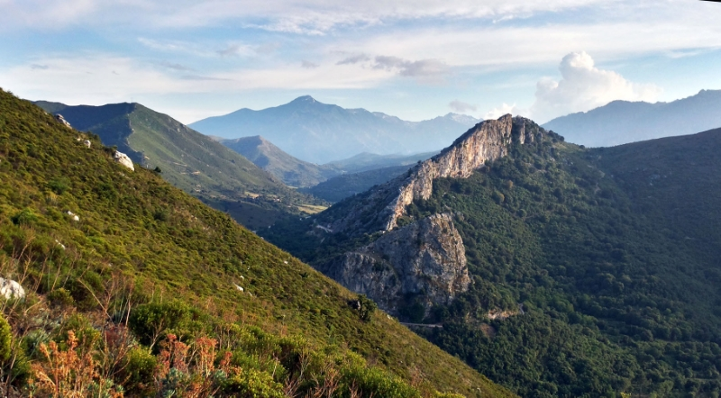THE BEAUTIFUL SCENERY ABOVE THE VILLAGE OF FRANCARDU, CORSICA. STEEP SLOPES COVERED IN MAQUIS SHRUB ACCENTED BY LIMESTONE CLIFFS. ©fireweatherlab.