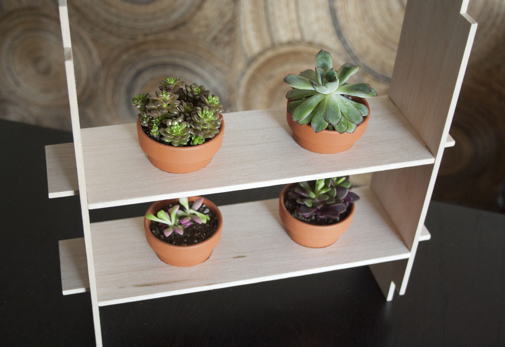 A view of the reusable factor of the package. All 4 plants fit into the holder.