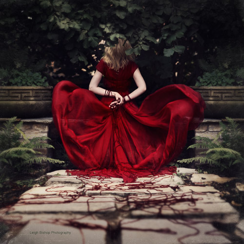 Tangled Fate