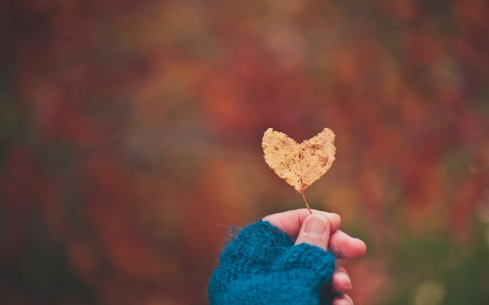 girl-hand-holding-a-heart-leaf-at-morning-in-winter.jpg