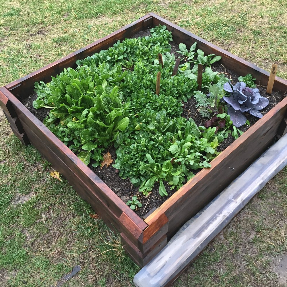 Raised_Garden_Bed_OneSmallGarden.JPG