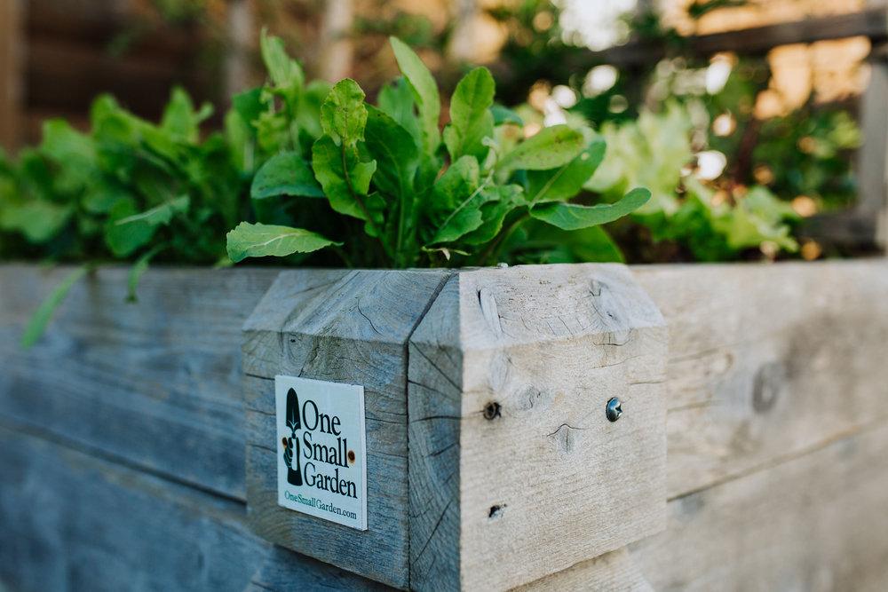 Raised Garden and Chicken Coop - One Small Garden