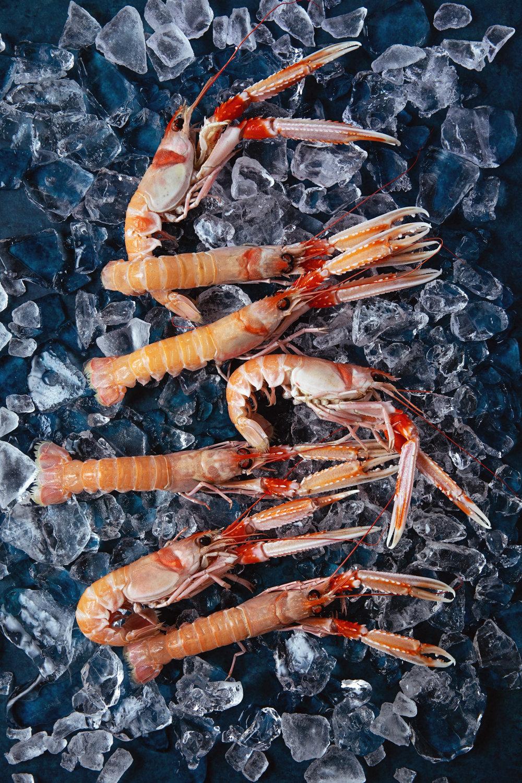 seafood-langoustines-shrimp-dinner-.jpg