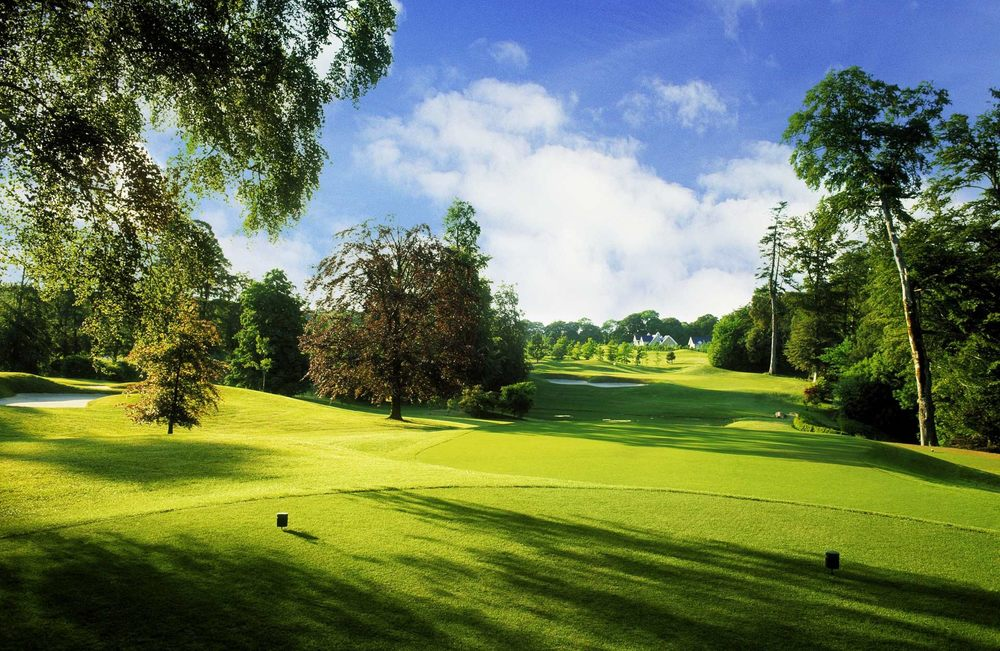 Mature trees are a constant factor. © MountJuliet.ie
