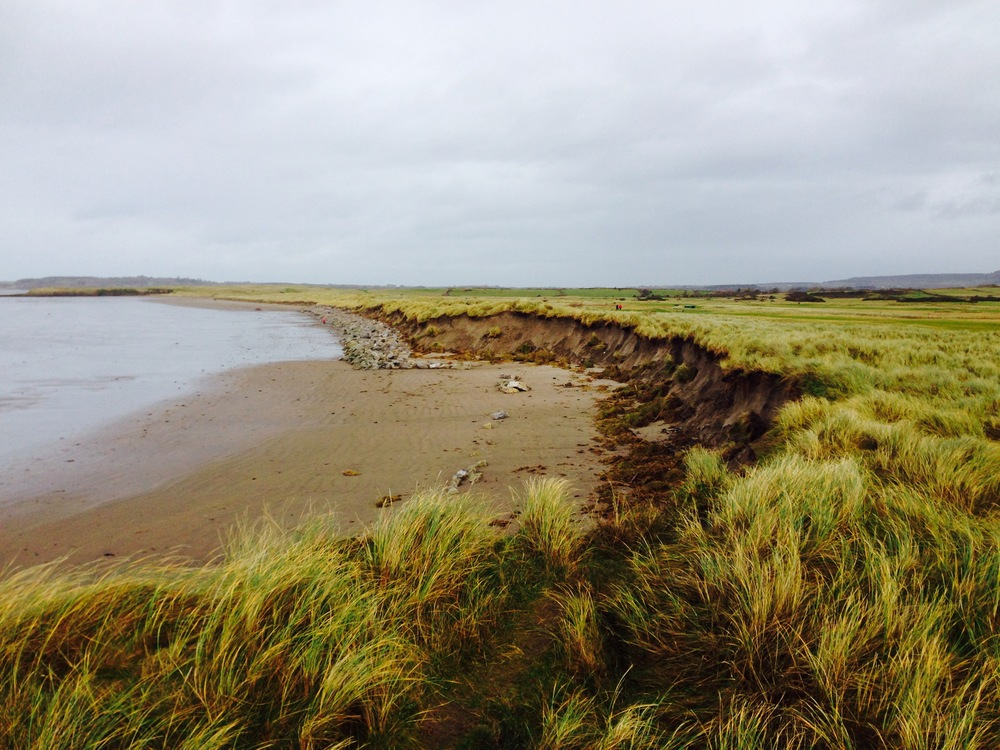 Erosion along the right side of the famous 17th hole at County Sligo Golf Club, Rosses Point.