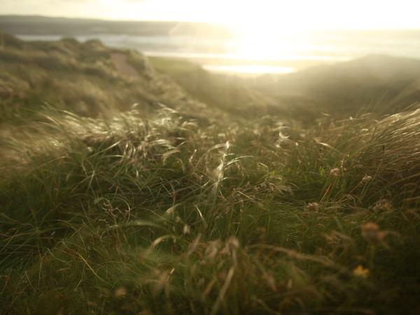 Doonbeg's dunes