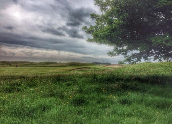 The rough right of the 10th at County Louth.