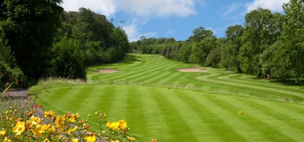 Naas Golf Club  will host the final of the Miele All Ireland Fourball Championship on Sunday.