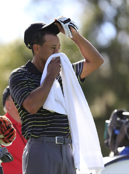 Tough day at the office. Tiger Woods towels himself down in Orlando. Picture Fran Caffrey,  www.golffile.ie