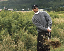 Tiger Woods tackles the Royal County Down rough in 2005. Picture via  Royal County Down