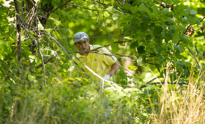 Bryson DeChambeau prepares to play his shot from the trees on the sixth hole during the quarterfinal round of match play of the 2015 U.S. Amateur at Olympia Fields Country Club in Olympia Fields, Ill. on Friday, Aug. 21, 2015.  (Copyright USGA/Chris Keane)