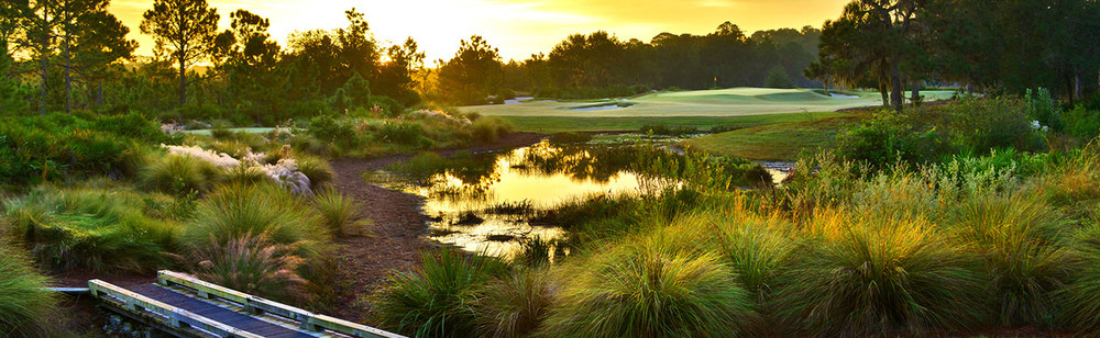 The Concession Golf Club