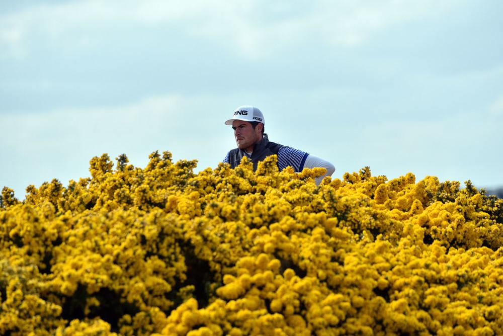 2016 Flogas Irish Amateur Open Championship