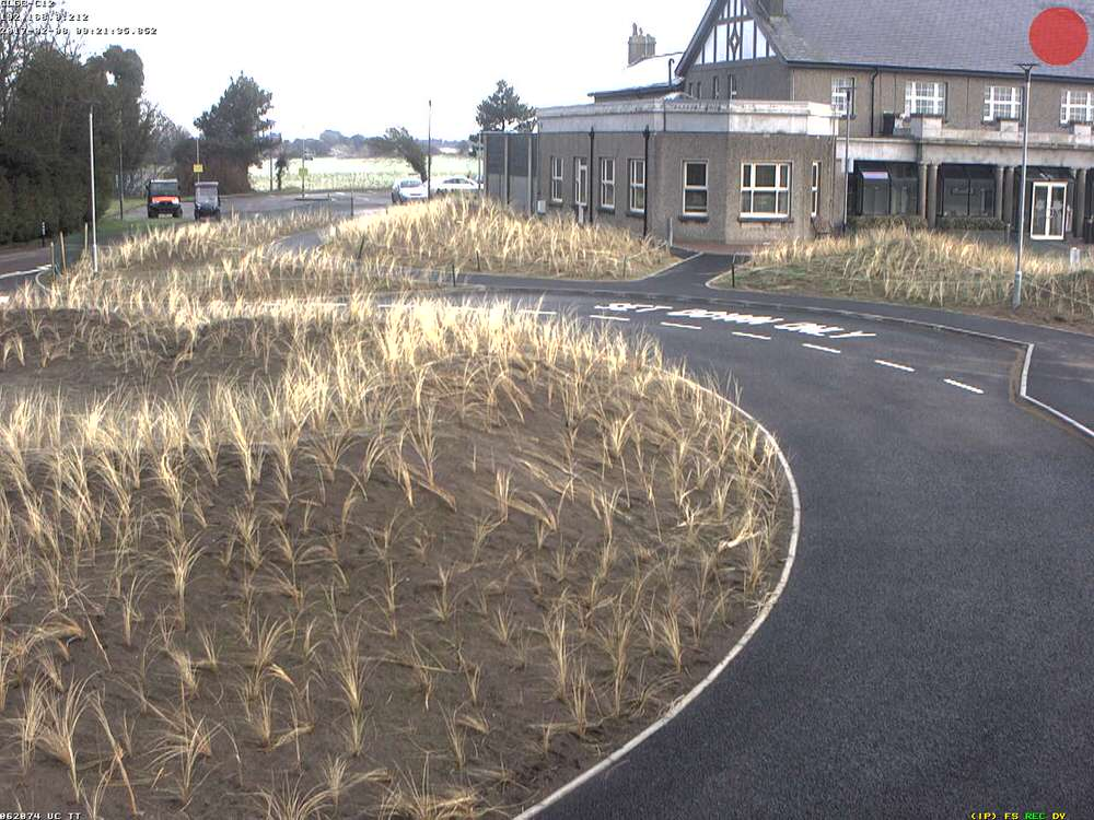 Marram grass planting around the clubhouse