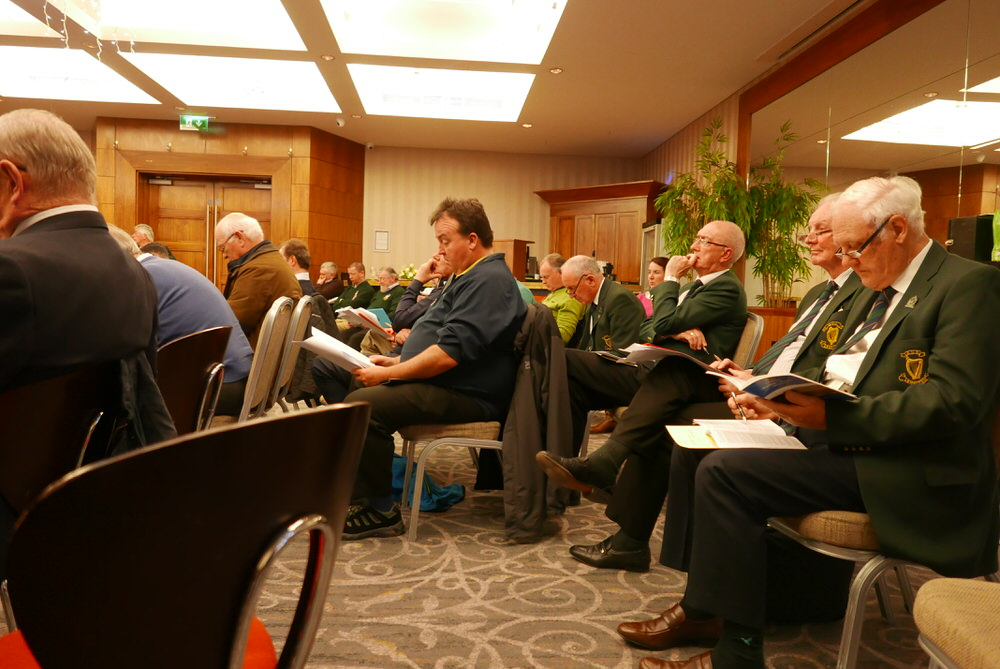 Delegates at the Leinster ADM