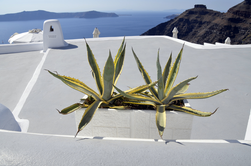 Greece_Santorini_for6_©Hogger&Co.007.jpg