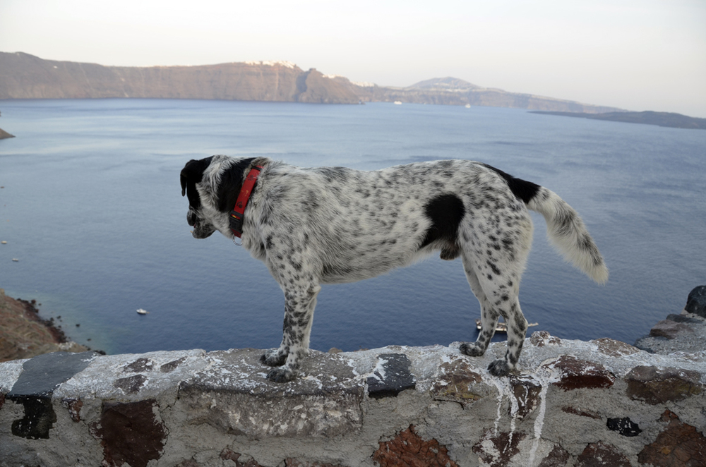 Greece_Santorini_for6_©Hogger&Co.043.jpg