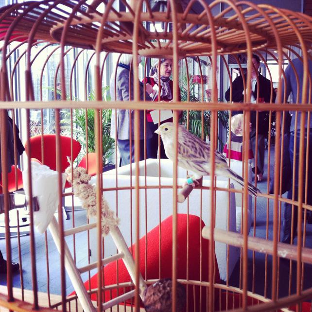 gard_birdcage.jpg