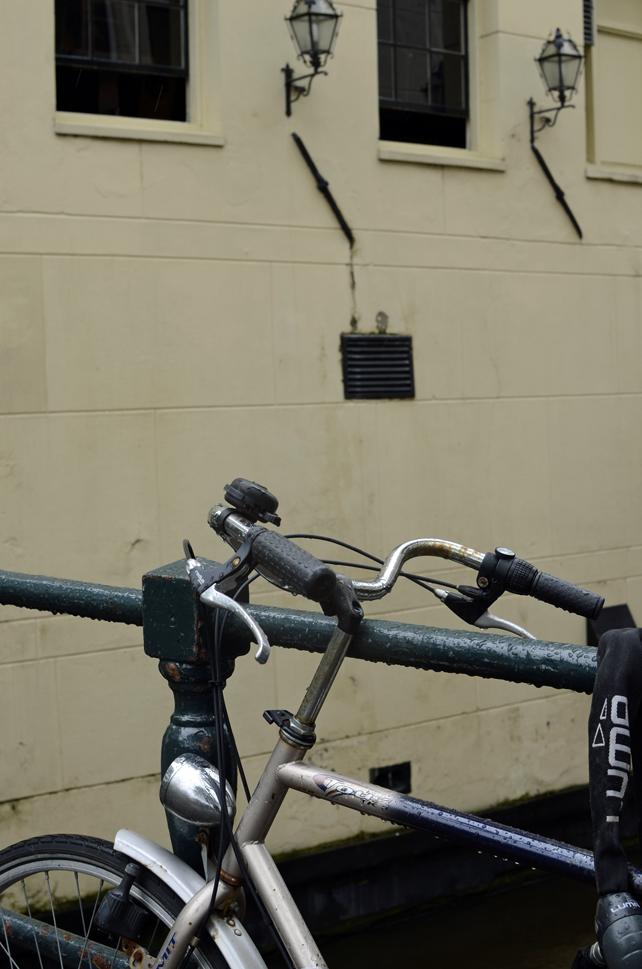 am_bike2.jpg