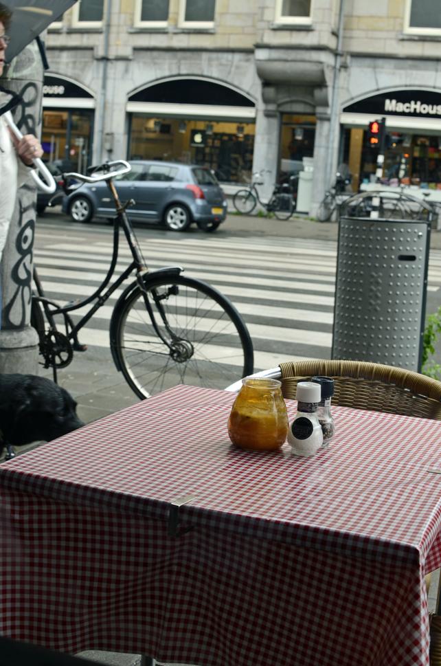 am_bike3.jpg